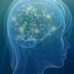 brainactivity