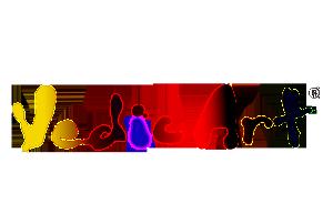 Färg+color+logo+webb